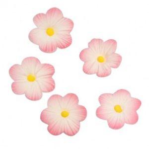 Culpitt Suikerdecoratie Daisy Pink 12st