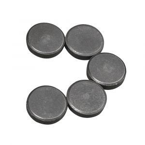 Magneet Ø20mm, dikte 5mm 5st Rayher 89 217 00