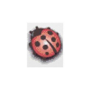 Pakket 1 plaat Lieveheersbeestje