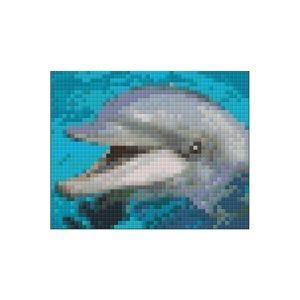 Pakket 1 plaat Dolfijn