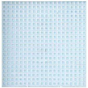 Plastic Stramien grof 30x45cm