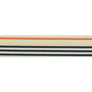 Ripsband 291 multicolor