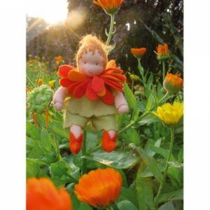 Bloemkindje Goudsbloem 12 cm hoog