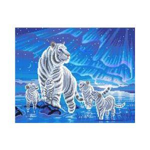 Crystal Art Kit® Canvas met led verlichting Aurora Family