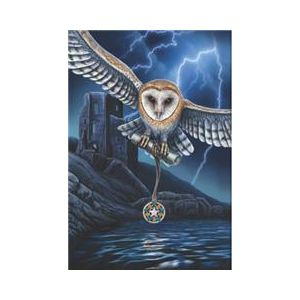 Crystal Art Kit® Canvas met led verlichting Heart of the storm