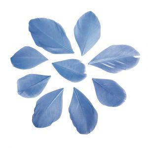 Veren gesneden lichtblauw Rayher 85 463 356