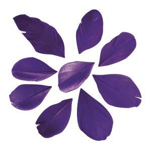 Veren gesneden paars Rayher 85 463 316